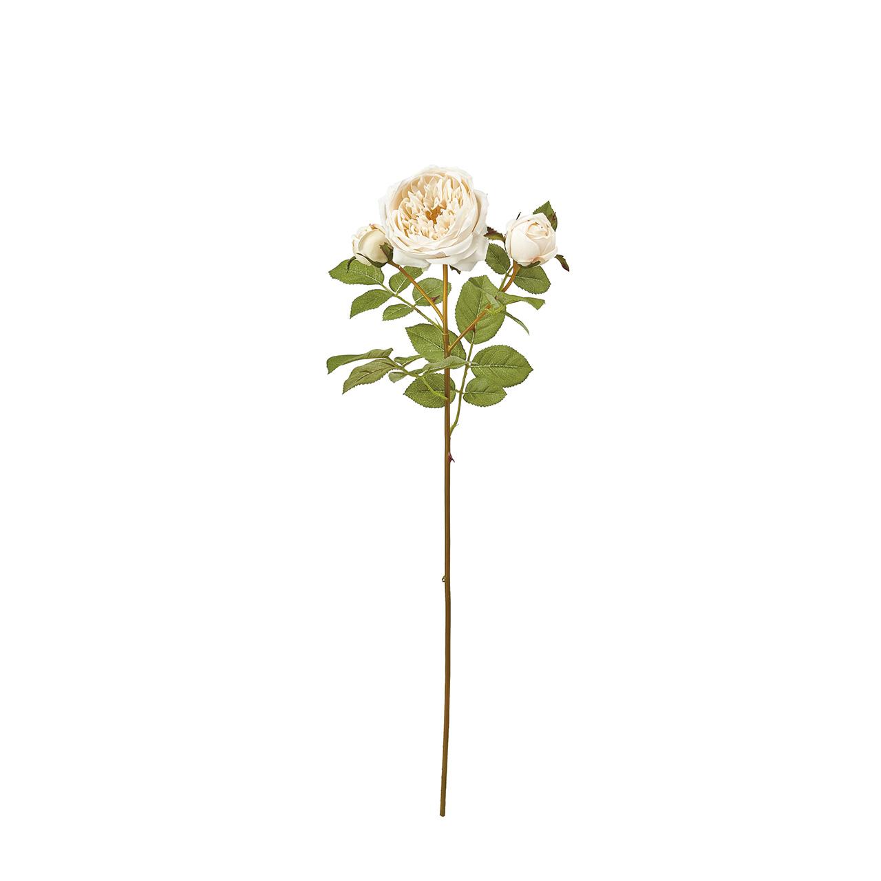 サステナブル アーティフィシャルフラワー(造花)